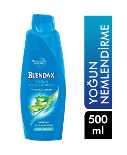BLENDAX SAMP. 500 ML  ALOE VERA resmi